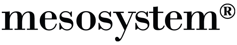 Logotipo de MESO SYSTEM S.A.